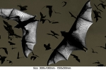 flying-foxes-twilight
