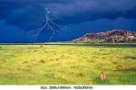 storm-bringer